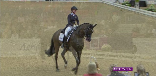 Femteplats på Gothenburg Horse Show